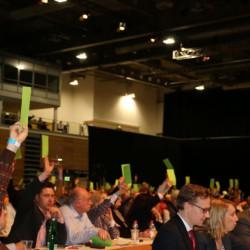 Abstimmung über das Europawahlprogramm Foto: ms
