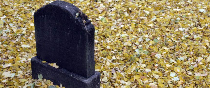 Friedhof der Georgen-Parochialgemeinde: Lob von den Grünen Foto: dpa/ZB