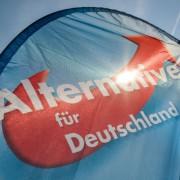 Logo der Alternative für Deutschland (AfD) Foto: picture alliance/dap