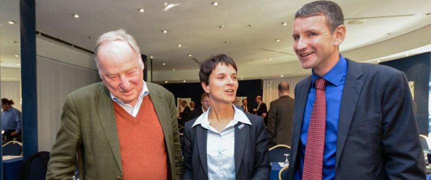 Die drei AfD-Fraktionschefs Alexander Gauland, Frauke Petry und Björn Höcke (v.l.n.r.) Foto: picture alliance/dpa