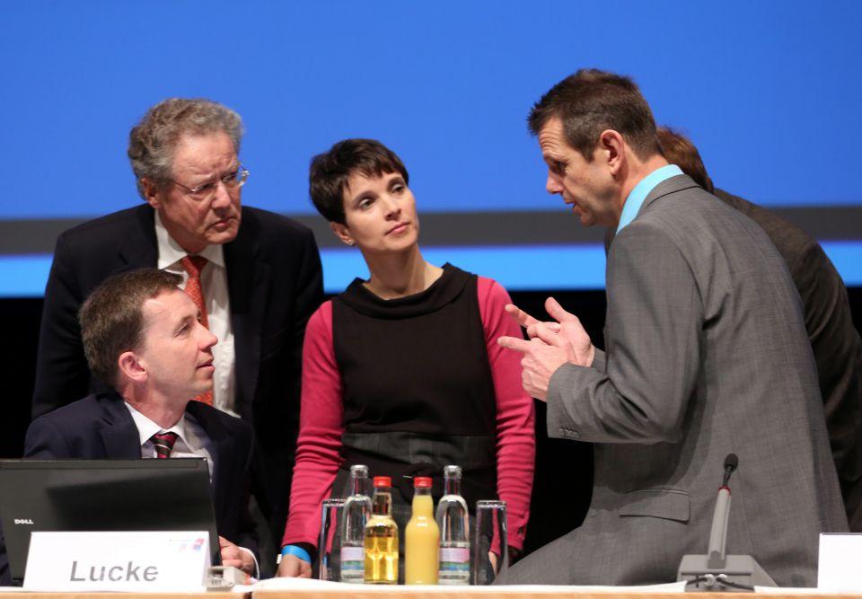 Bernd Lucke, Konrad Adam, Frauke Petry und Bernd Kölmel