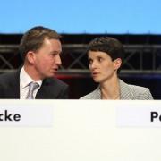 Bernd Lucke und Frauke Petry: Entscheidung in Bremen Foto: picture alliance/Geisler-Fotopress