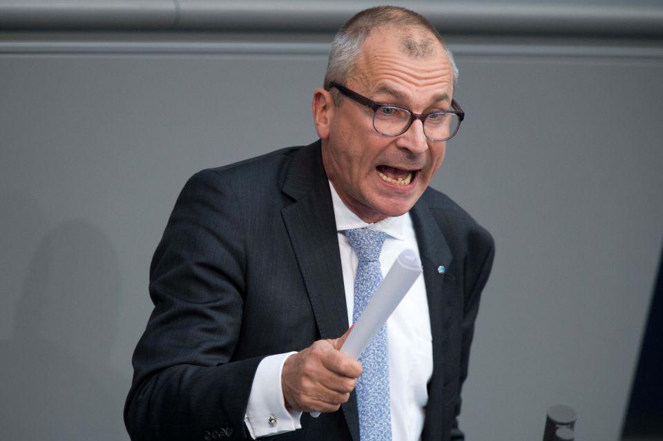 Volker Beck, Bundestag