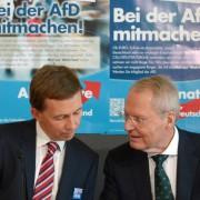 Bernd Lucke und Hans-Olaf Henkel (2014): Kritik am neuen Bundesvorstand Foto: dpa