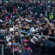 Asylbewerber an der slowenisch-österreichischen Grenze Foto: picture alliance / dpa