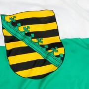 Sächsische Landesflagge: diktaturerfahrene Mitteldeutsche Foto: picture alliance/chromorange