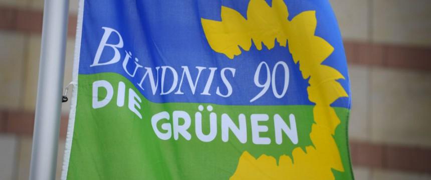 Logo der Grünen: Streit um Schußwaffen-Aussagen Foto: dpa