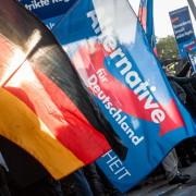 AfD-Fahne: Kritik an Grünen Foto:  picture alliance