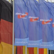 AfD-Flaggen in Stuttgart: Kurs auf den Bundestag Foto: picture alliance/Sven Simon