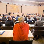 AfD-Abgeordneter Wolfgang Gedeon (m): Entscheidung um Monate vertagt Foto: picture alliance / dpa