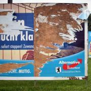 Zerstörtes Plakat der AfD Foto: picture alliance/dpa