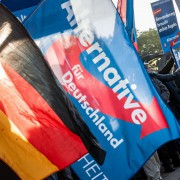 AfD-Demonstration: Partei im Umfragehoch Foto: picture alliance / Markus Scholz