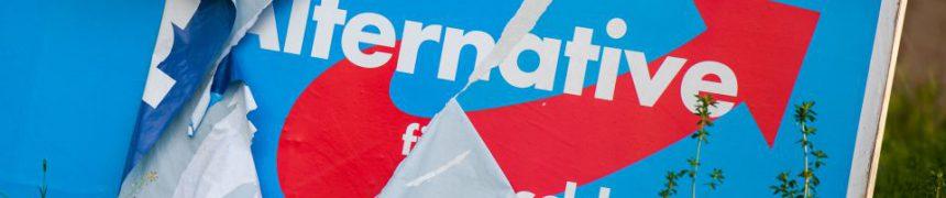 Abgerissenes AfD-Plakat