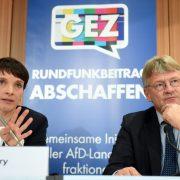 Die AfD-Bundesvorsitzenden Frauke Petry und Jörg Meuthen stellen am 05.12.2016 in Berlin auf einer Pressekonferenz die AfD-Initiative für die Abschaffung des Rundfunkbeitrages vor Foto: picture alliance / Britta Pedersen/dpa-Zentralbild/dpa