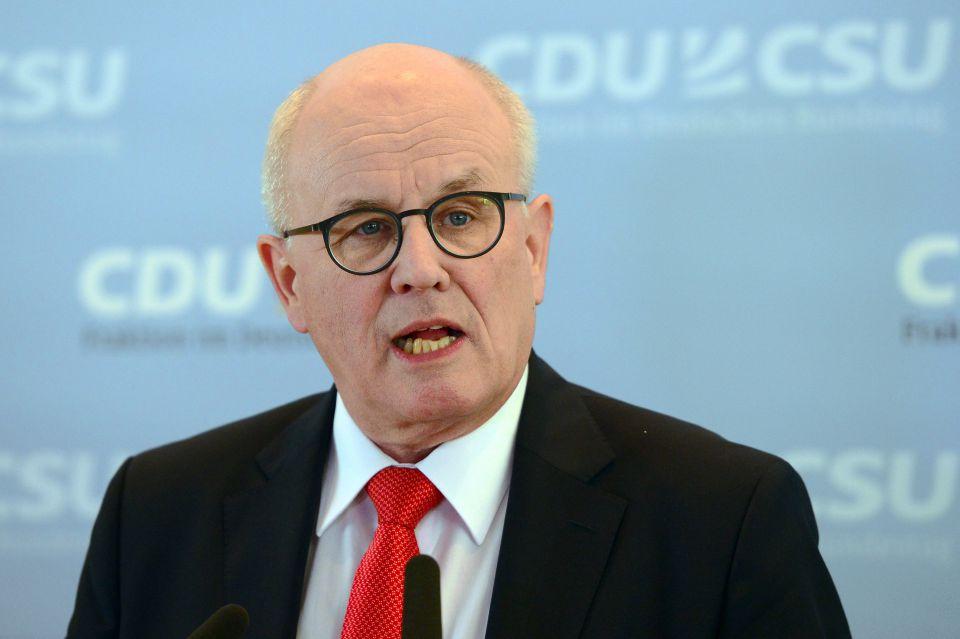Volker Kauder (CDU)