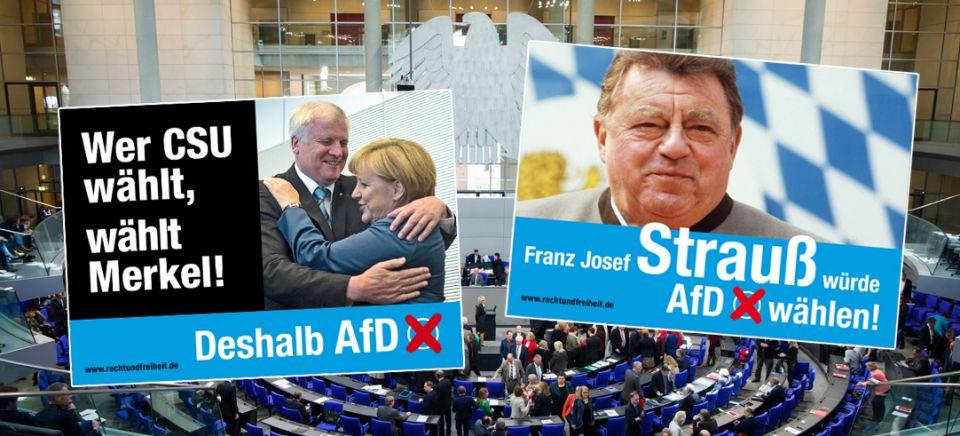 Verein wirbt für AfD-Wahl