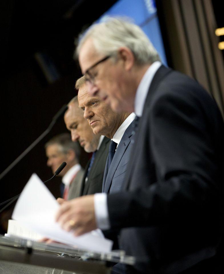 EU-Vertreter