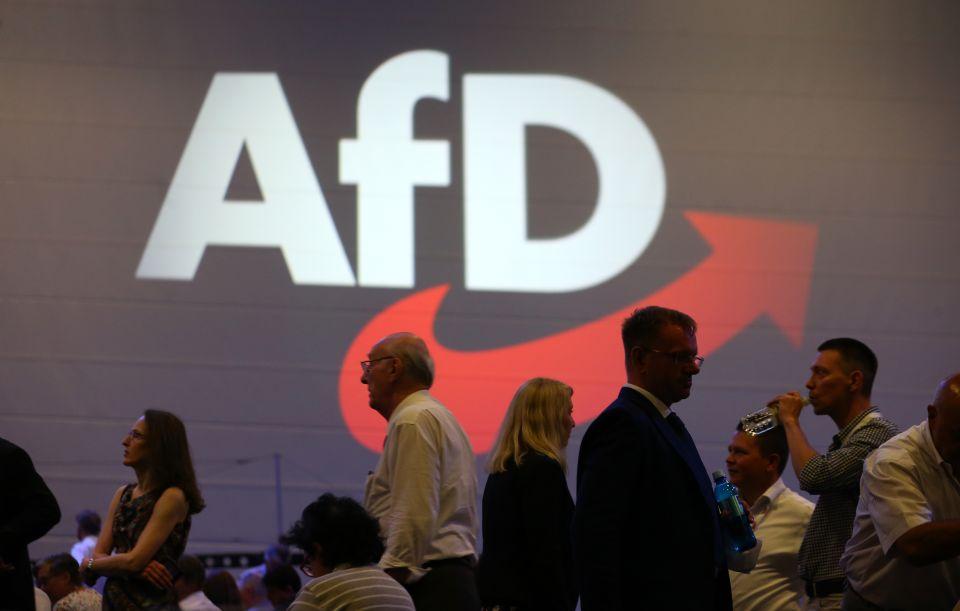 AfD-Parteitag