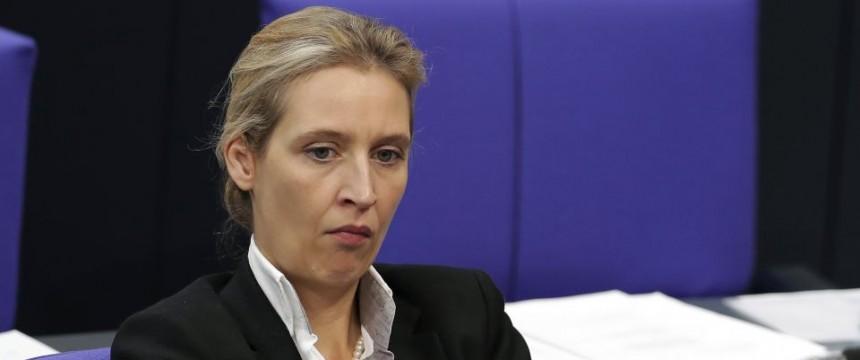 Aachener Vertrag Afd Warnt Vor Umverteilungsunion Junge Freiheit