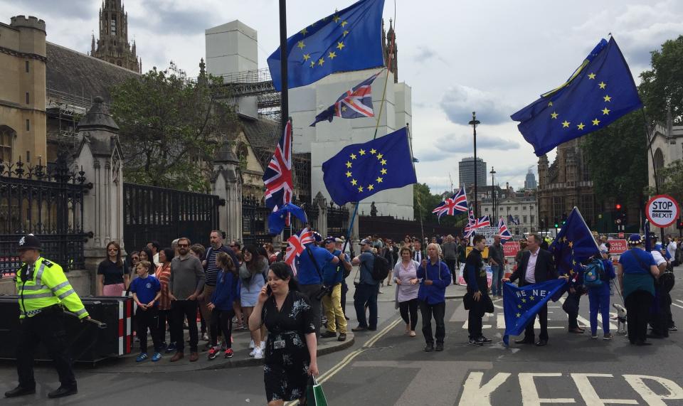 Brexit Gegner