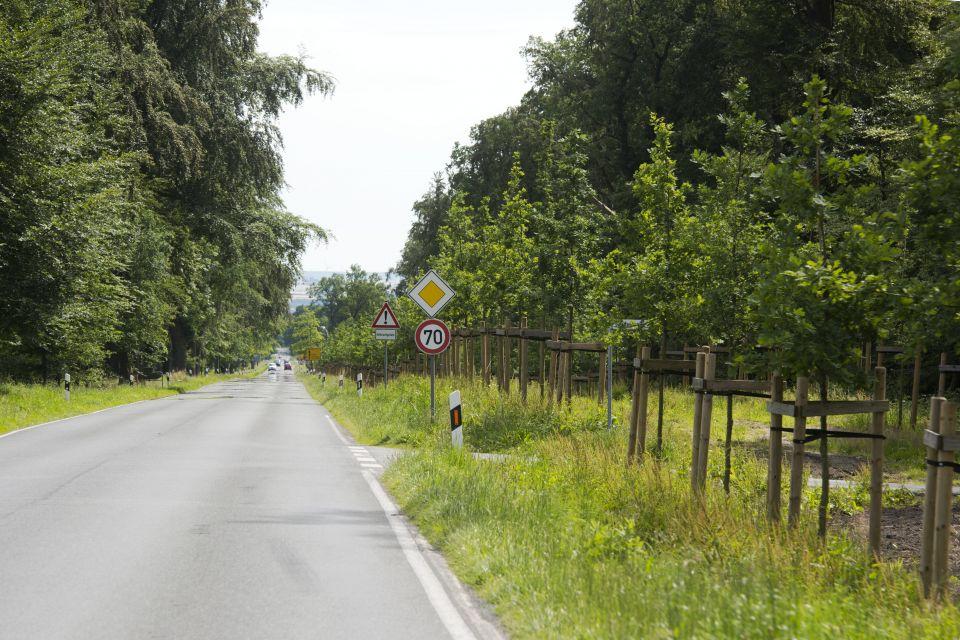 Der ländliche Raum mit seinen Entfernungen stellt Verkehrsplaner vor Herausforderungen (Symbolbild) Foto: picture alliance