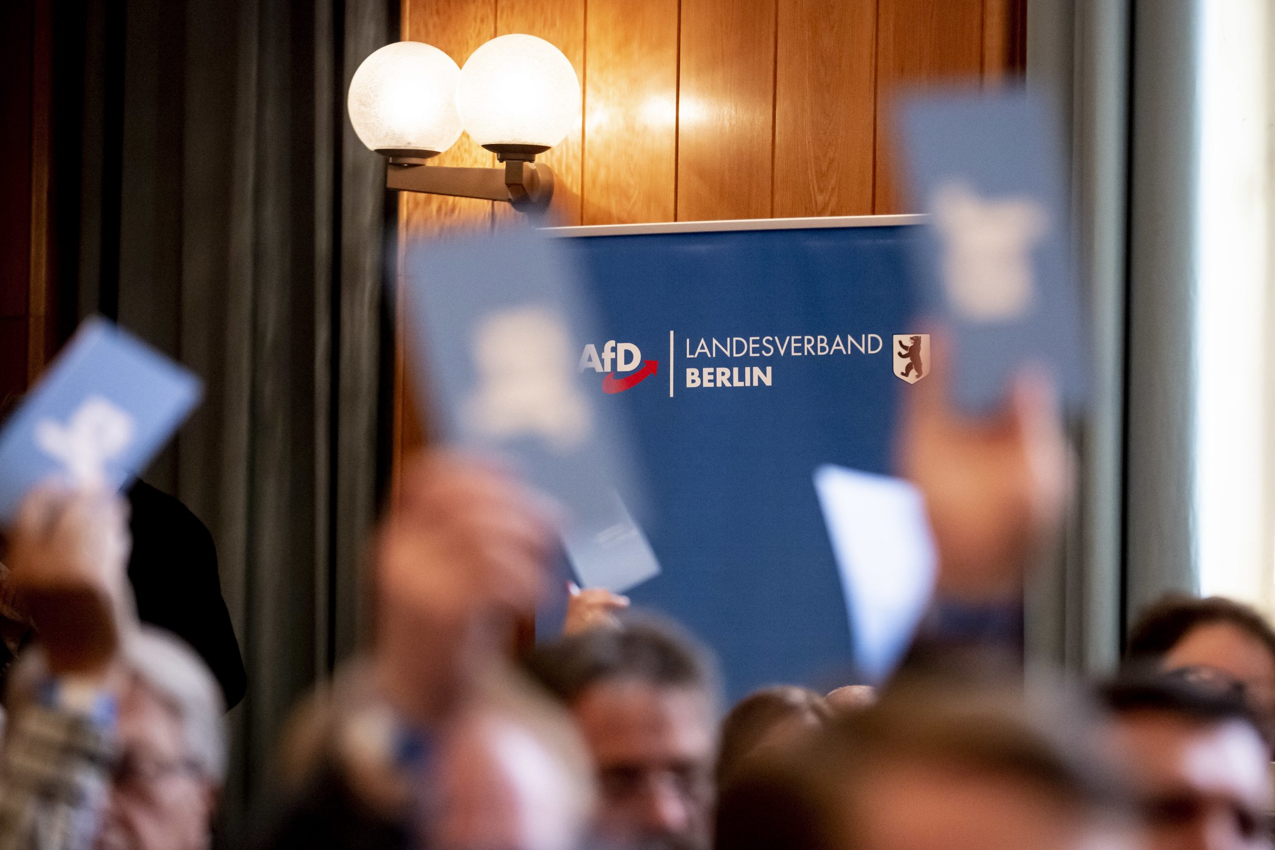 Parteitag der AfD Berlin 2019 Foto: picture alliance/Christoph Soeder/dpa