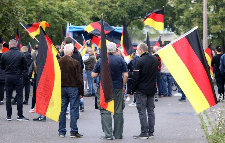 AfD-Demonstration