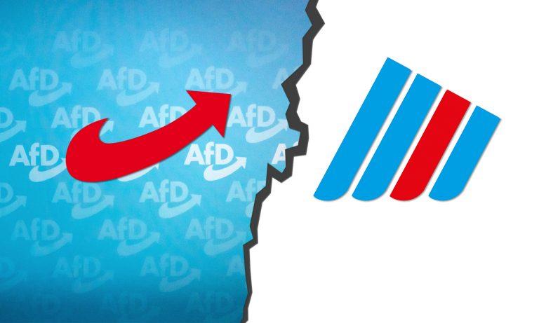 """AfD und """"Der Flügel"""""""