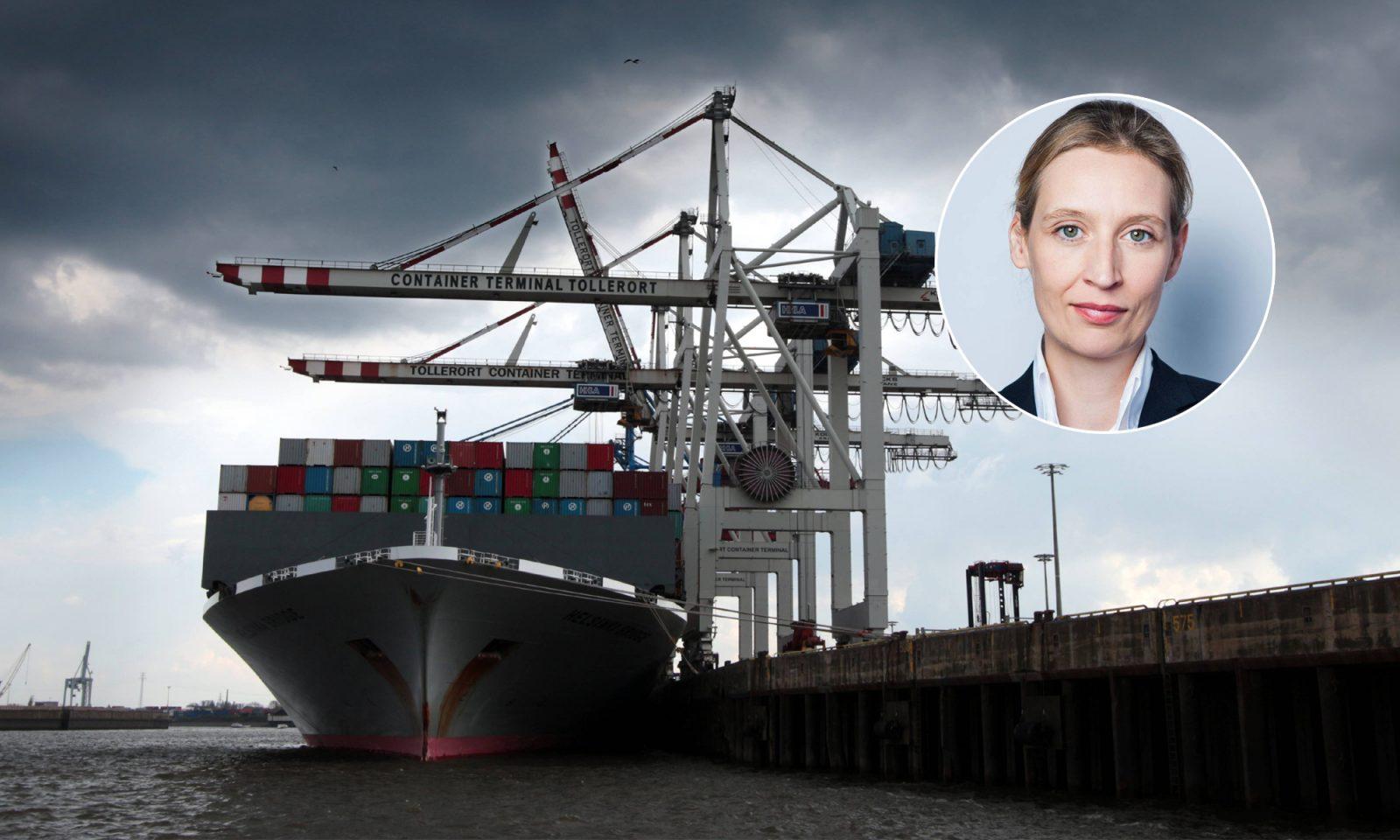 Alice Weidel, Containerschiff im Kai