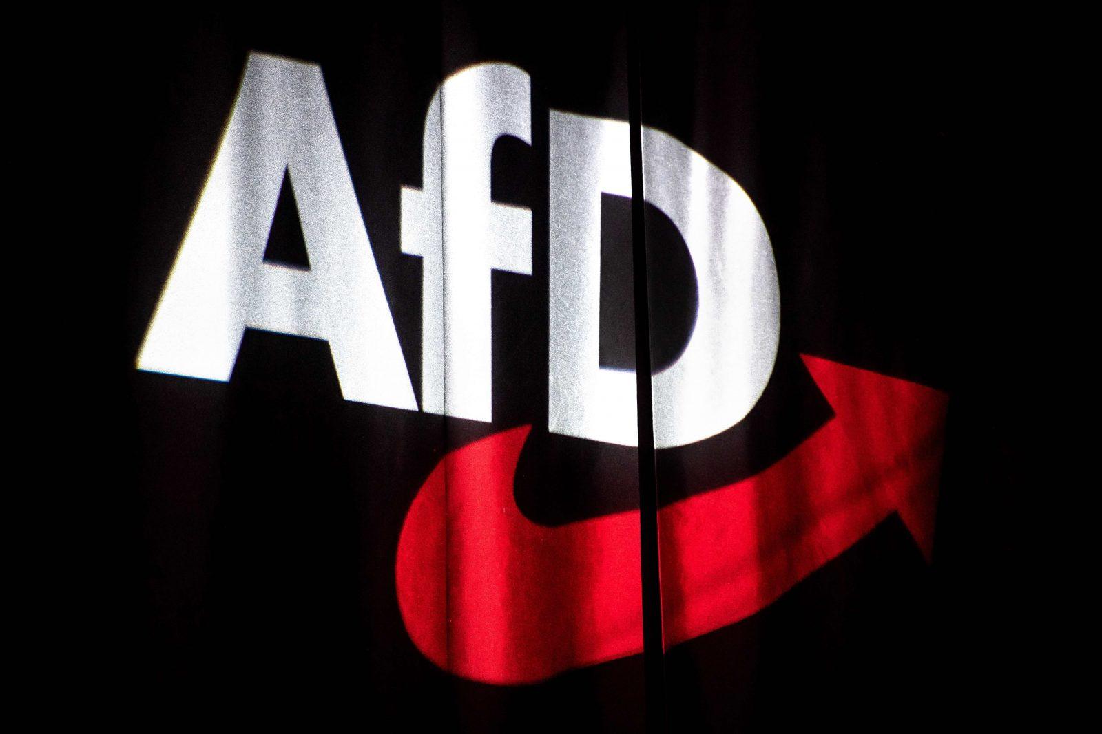 AfD Bundesparteitag