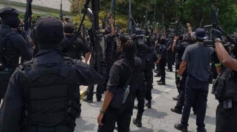 Mitglieder der Miliz NFAC sammeln sich in Stone Mountain im US-Bundesstaat Georgia Foto: Twitter
