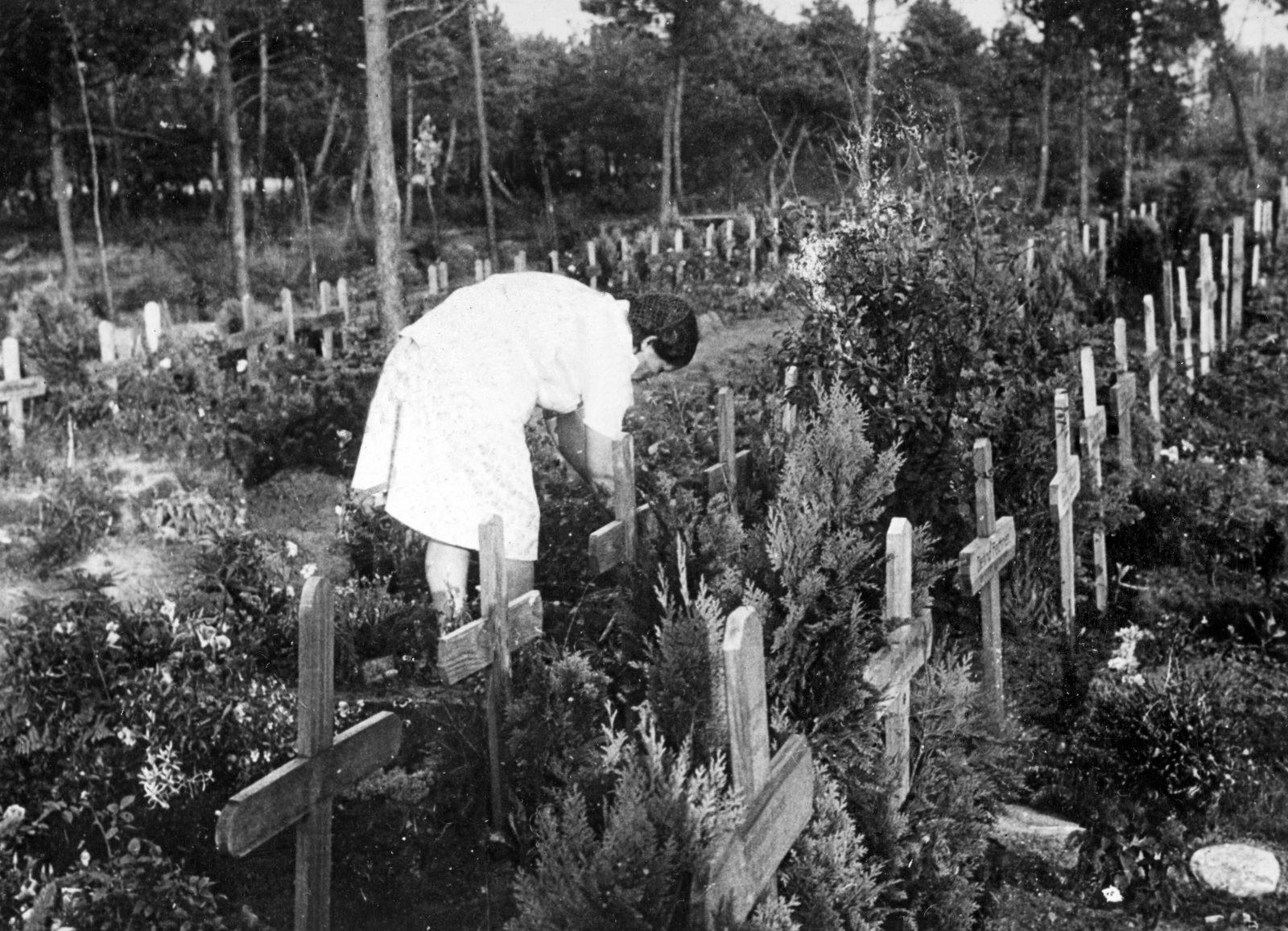 Ein deutscher Flüchtlingsfriedhof in Dänemerk nach dem Zweiten Weltkrieg Foto: picture alliance