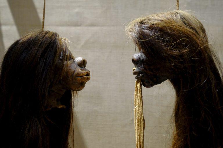 Künftig sind auch diese Schrumpfköpfe nicht mehr in dem Museum in Oxford zu sehen Foto: Pitt Rivers Museum, University of Oxford/AP Photo