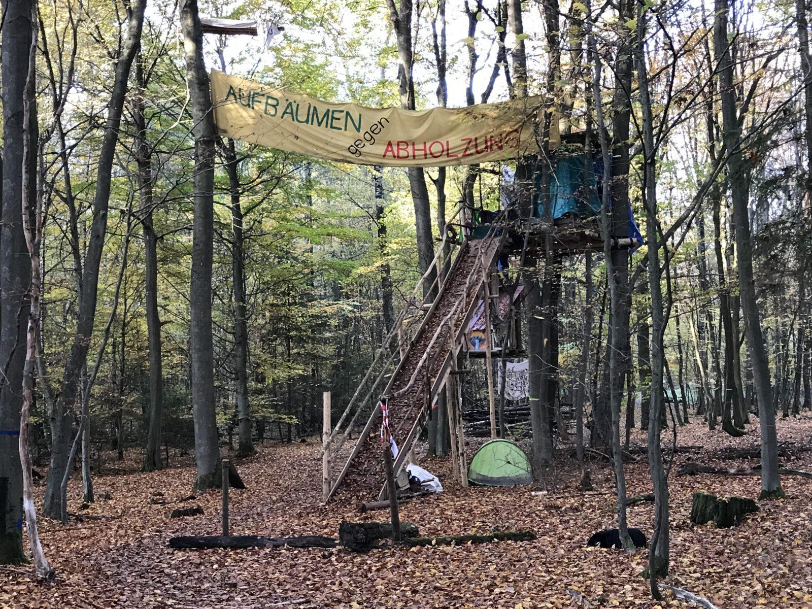 """""""Aufbäumen gegen Abholzung"""" steht auf einem Transparent der Demonstranten im Dannenröder Forst."""