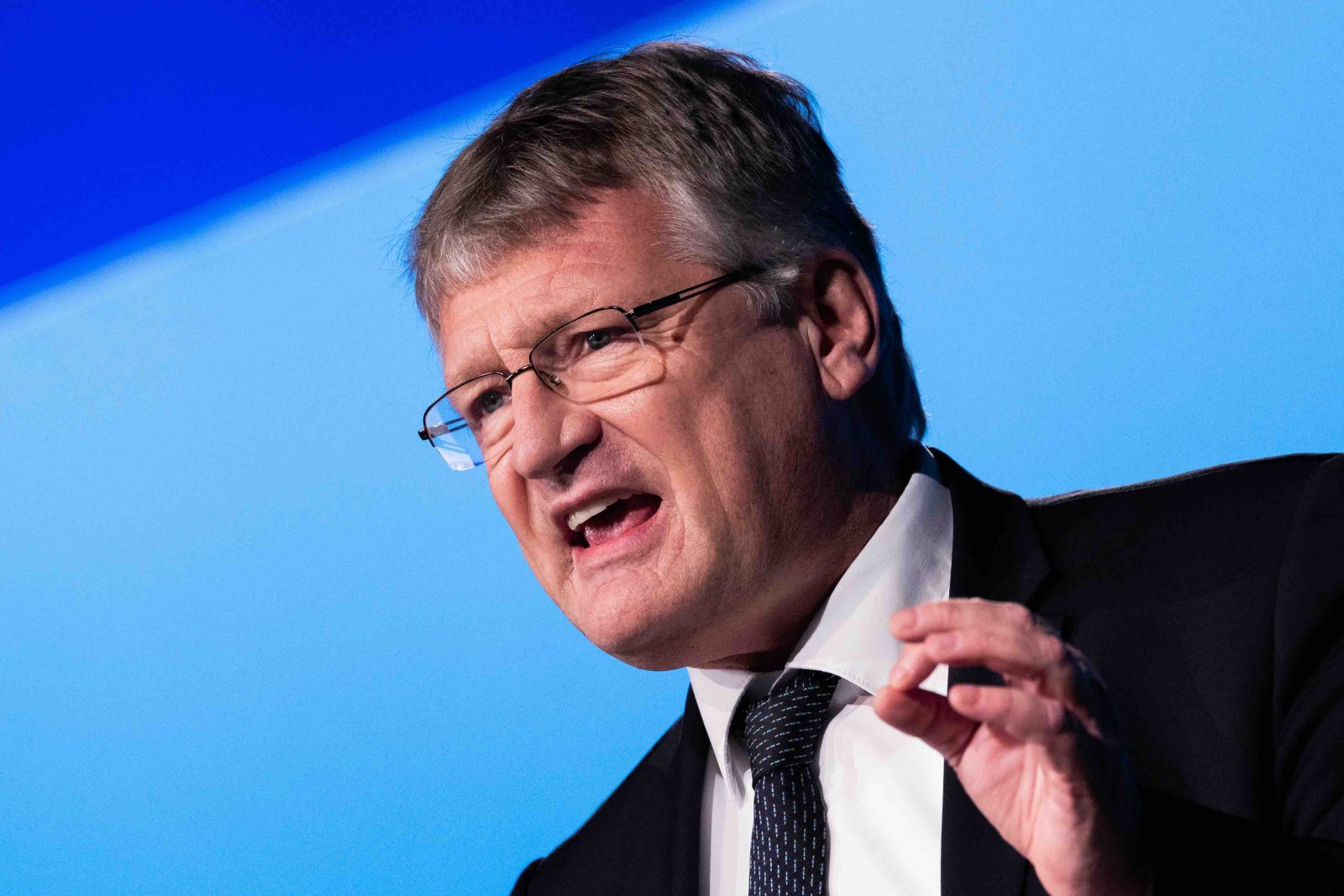 AfD Meuthen